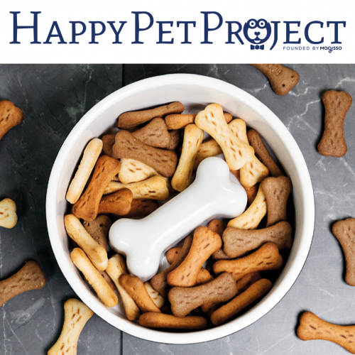 HappePetProject_Bild_Website_1